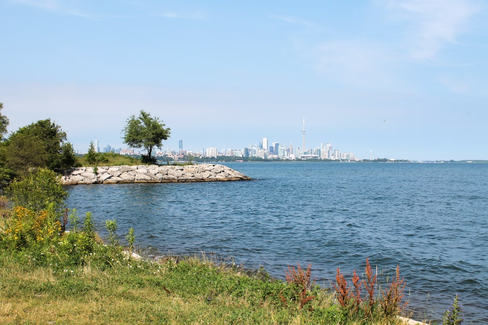 Relax in Humber Bay Park with a view of the Toronto skyline.
