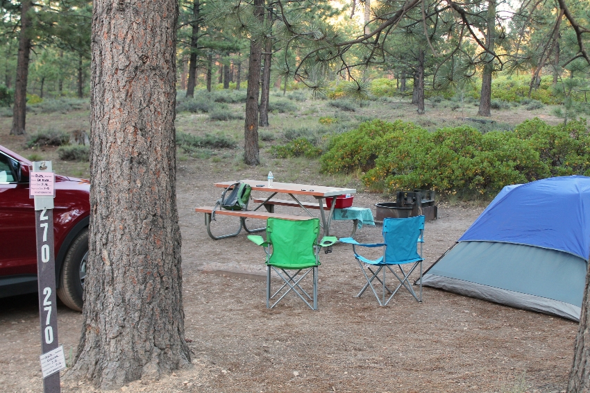 Sunset Campground Bryce Canyon