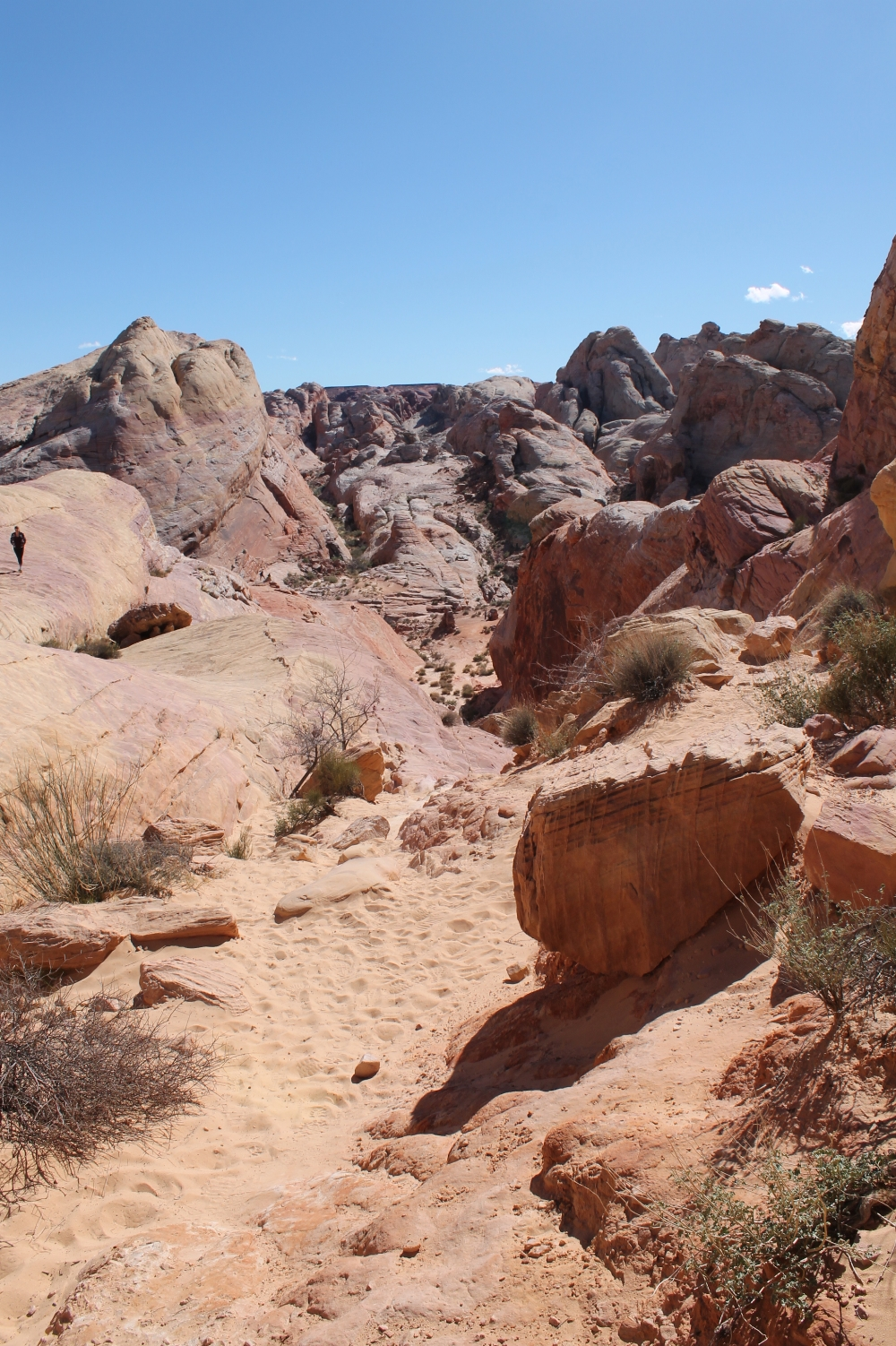 Valley of fire - White domes