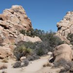 Wandelen in Joshua Tree National Park - Hidden Valley Trail