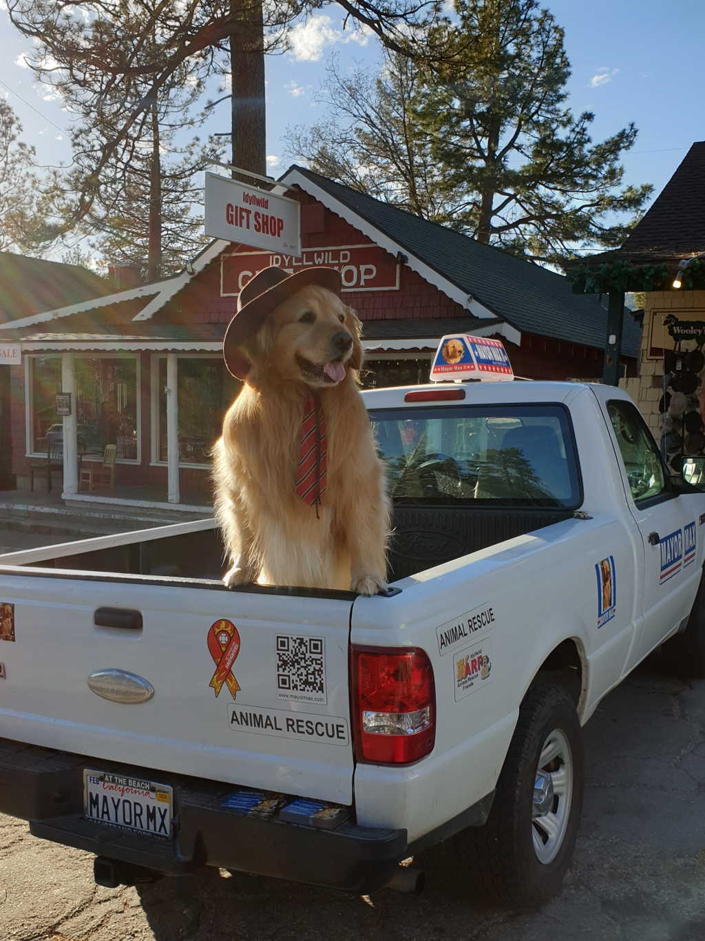 Van Julian naar Idyllwild - Pacific Crest Trail week 2 - Mayor Max