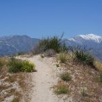 Van Big Bear Lake naar Wrightwood - Pacific Crest Trail week 4