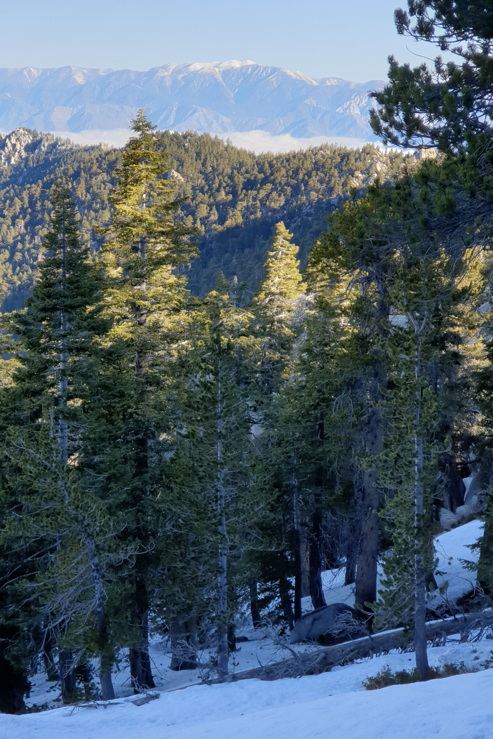 Van Idyllwild naar Big Bear Lake - Pacific Crest Trail week 3 - fuller ridge uitzicht