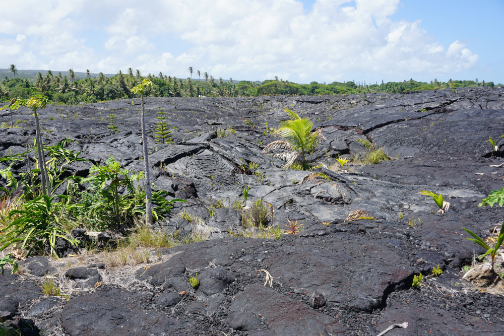 Hawaii - The Big Island - lava kust 2