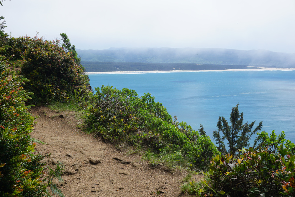 Kust Oregon - Trail Cape Lookout State Park 2