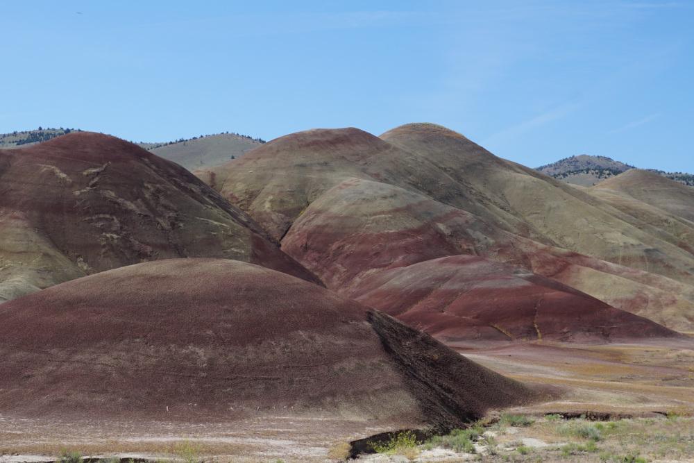 Rode Painted Hills