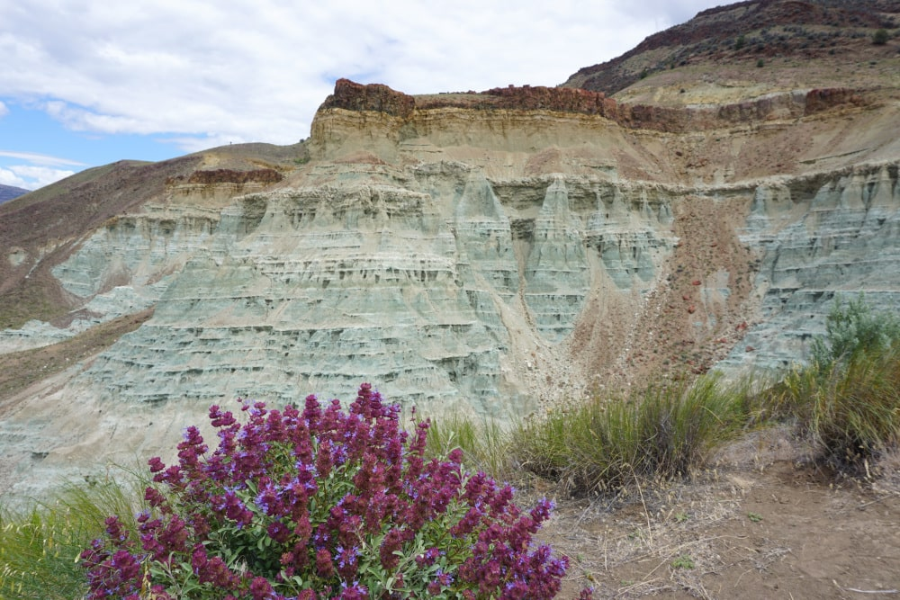 John Day Fossil Beds National Monument - Sheep Rock District