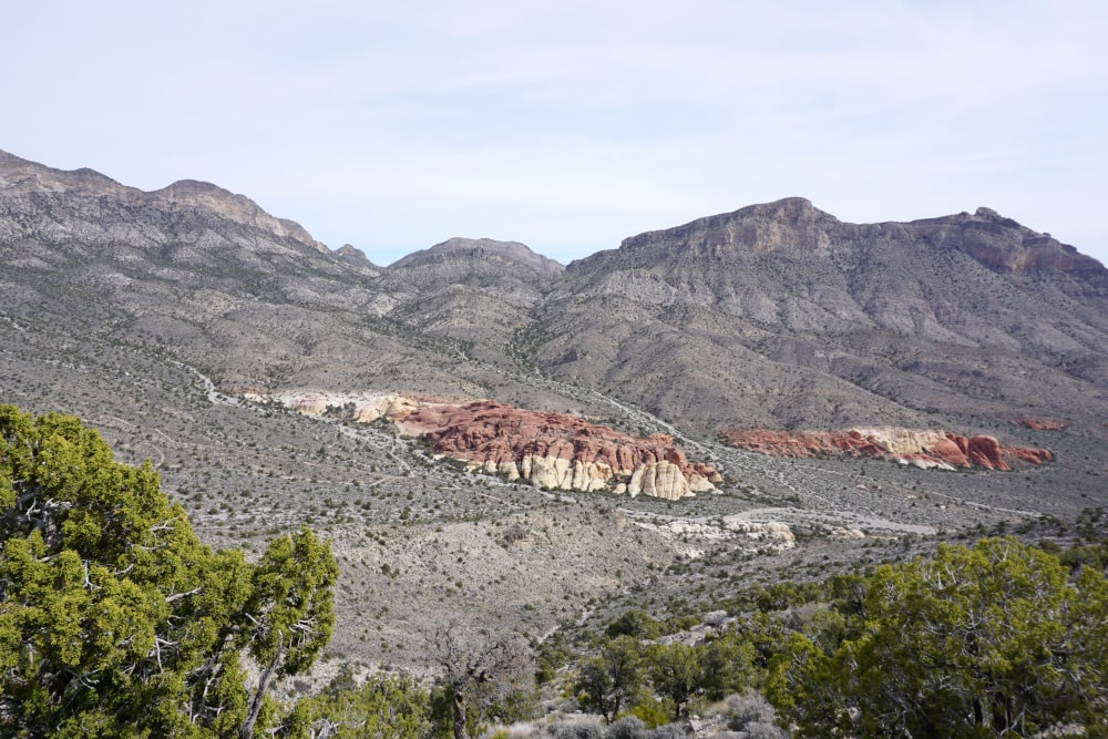Bijzondere rode rotsen in Red Rock Canyon