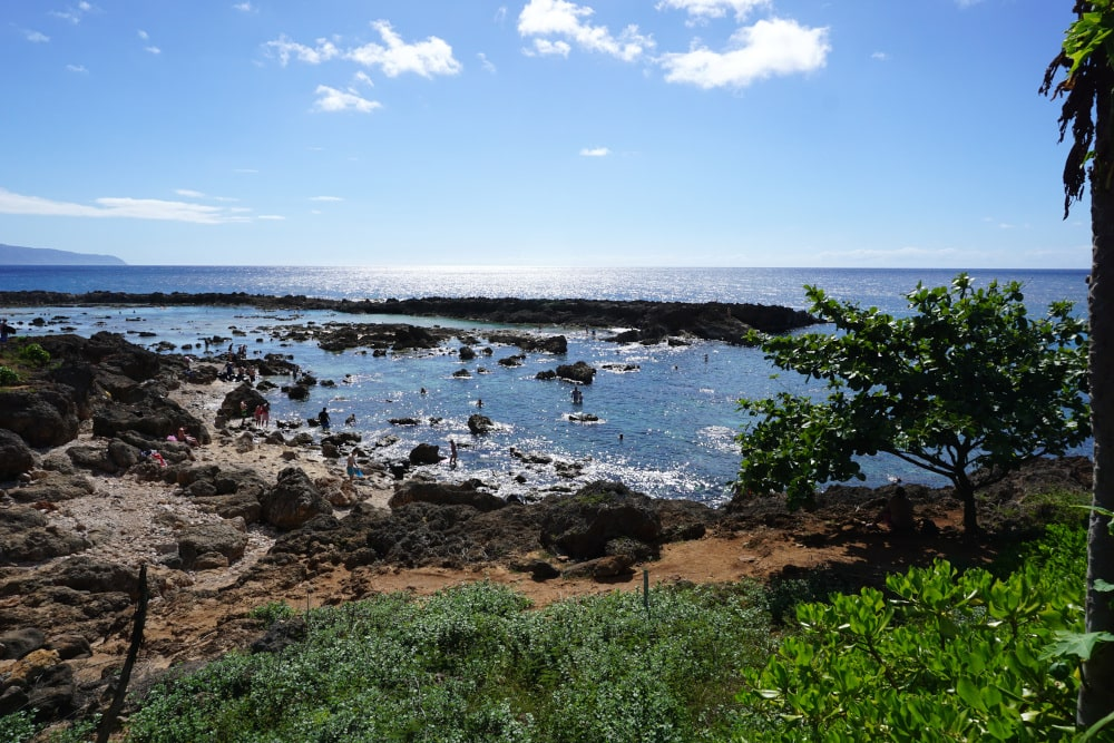 Sharks Cove Oahu