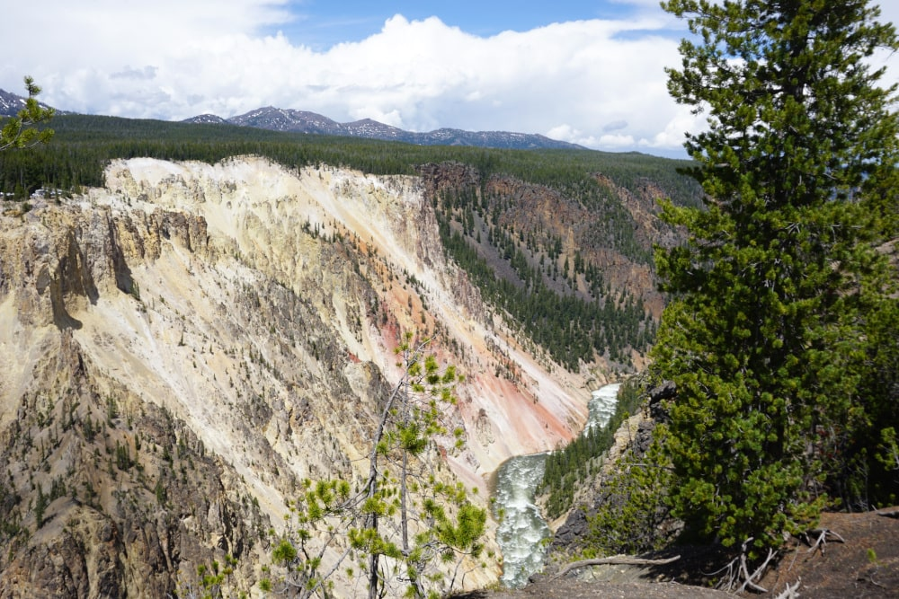 Grand Canyon of the Yellowstone - roze kliffen