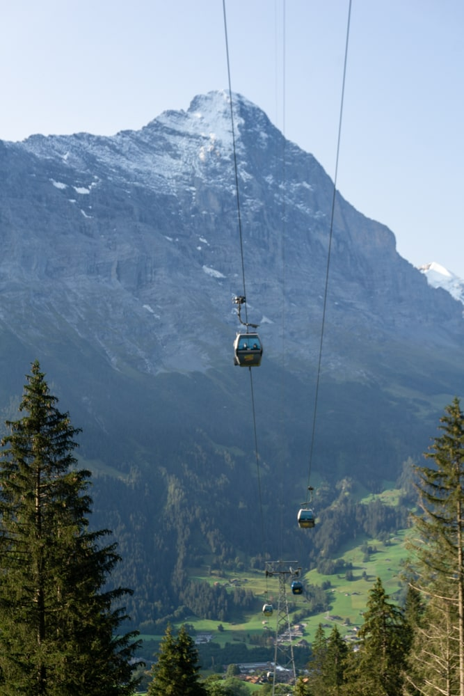 The gondola to Grindelwald First