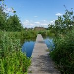 De Alde Feanen National Park - information and tips